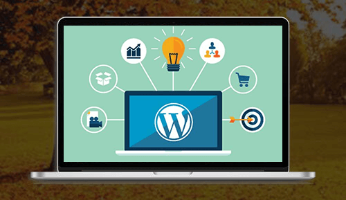 Wordpress website - MagicByte Solutions