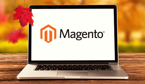 Magento website - MagicByte Solutions