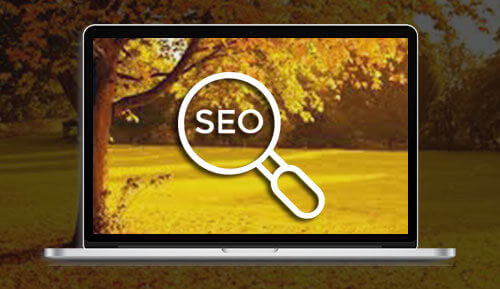 SEO services - MagicByte Solutions